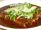 Authentic Mexican Enchiladas Recipe